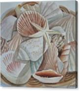 Basket Of Shells Canvas Print