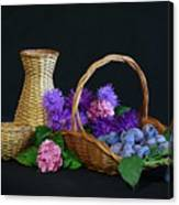 Basket With Astern Canvas Print