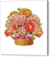 Basket With Ranunculus Flowers Watercolor Canvas Print