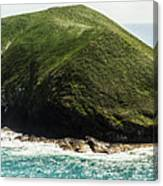 Bass Strait Island Wilderness Canvas Print