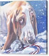 Basset Hound Christmas Canvas Print