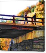 Bastion Falls Bridge 1 Canvas Print