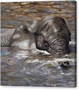 Bath Time - African Elephant In The Water Canvas Print