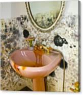 Bathroom Mold Canvas Print