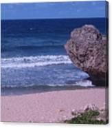 Bathsheba Beach Barbados Canvas Print