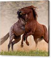 Battleground Canvas Print