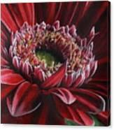 Bauble Canvas Print