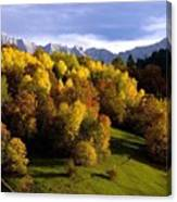 Bavarian Alps 2 Canvas Print