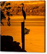 Bay At Sunrise - Heron Canvas Print
