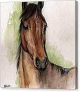 Bay Horse Portrait Watercolor Painting 02 2013 Canvas Print