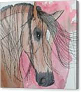 Bay Horse Watercolor Canvas Print