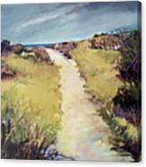 Bay Path Canvas Print