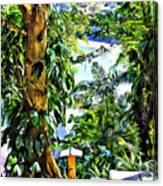Bay View Tobago Canvas Print