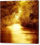 Bayou Heaven Canvas Print