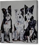 Bc Family Portrait  Canvas Print