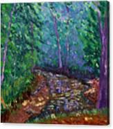 Bcsp 9-20 Canvas Print