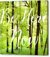 Be Here Now Green Forest In Spring Canvas Print