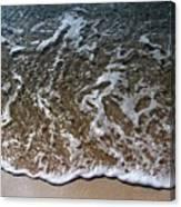 Beach At Grand Turk Ocean Beauty Canvas Print