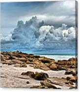 Beach At Washington Oaks Canvas Print