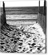 Beach Entry Black And White Canvas Print