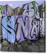 Beach Graffiti  Canvas Print