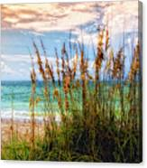 Beach Grass II Canvas Print