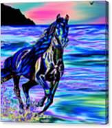 Beach Horse Canvas Print