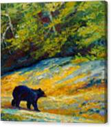 Beach Lunch - Black Bear Canvas Print