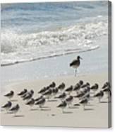 Beach Mantra Canvas Print