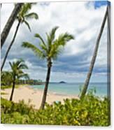 Beach On Maui 23 Canvas Print