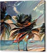 Beach Palms - Multi 9a Canvas Print
