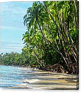 Beach Paradise  Canvas Print