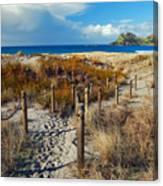 Beach Path 2 Canvas Print
