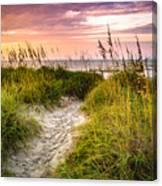 Beach Path Sunrise Canvas Print