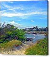 Beach Path Wisdom Canvas Print