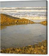 Beach Puddle Canvas Print