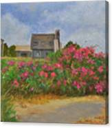 Beach Roses And Cottages Canvas Print