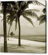 Beach Scene In Key West Canvas Print