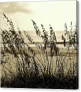 Beach - Sepia Canvas Print