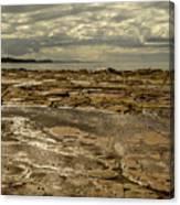 Beach Syd02 Canvas Print