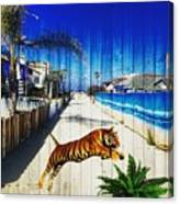Beach Tiger  Canvas Print