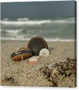 Beach Treasures 1 Canvas Print