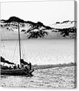 Beached At Coorong Bw Canvas Print