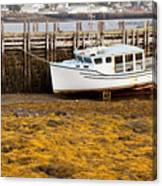 Beached Boat During Low Tide In Nova Scotia Canada Canvas Print