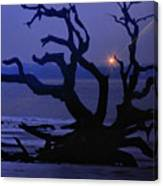 Beam Me Up To The Beach Canvas Print