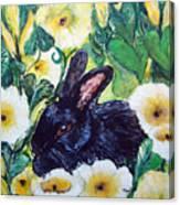 Bean The Magical Rabbit -pet Portrait Canvas Print