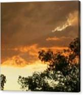 Bear Cloud Canvas Print