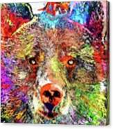 Bear Colored Grunge Canvas Print