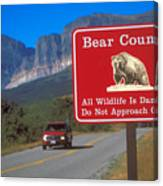 Bear Country In Montana Canvas Print
