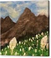 Bear Grass Bloom 2017 Canvas Print